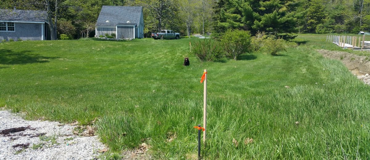 photo of boundary stake in lawn