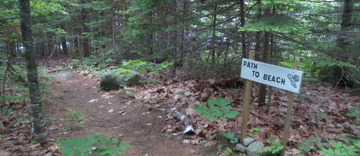 photo of path in the woods with sign that says path to beach