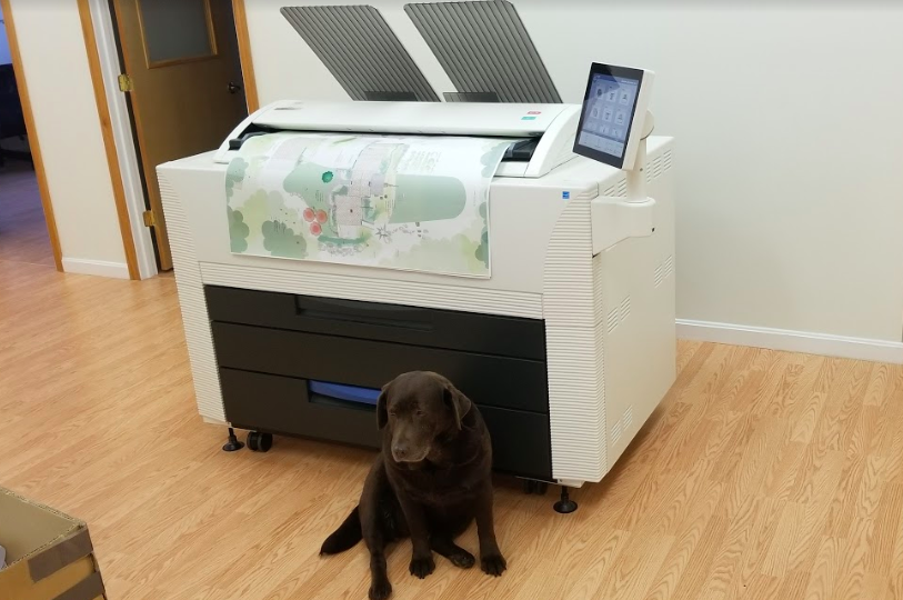 penny the dog sitting in front of a wide format printer