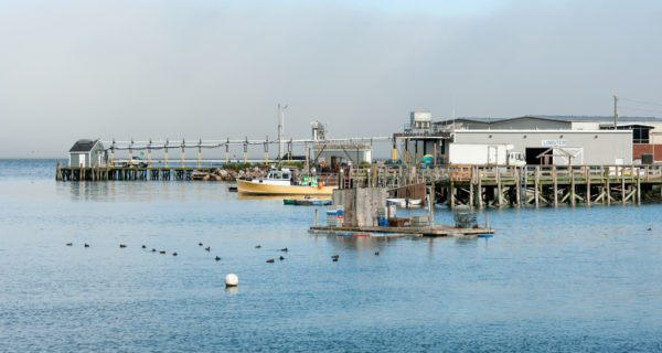 Lobster processing facility and fishing boats in Prospect Harbor in northern Maine, USA