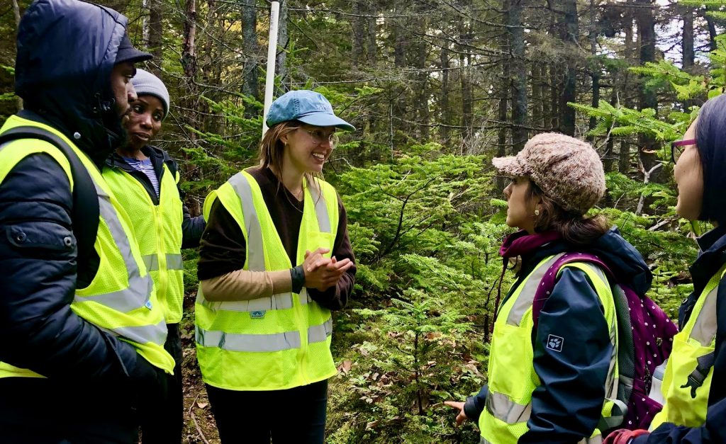 Citizen scientists in the woods