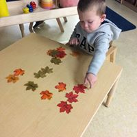 Child playing with leaves