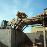 7-Log-loader-feeding-mill